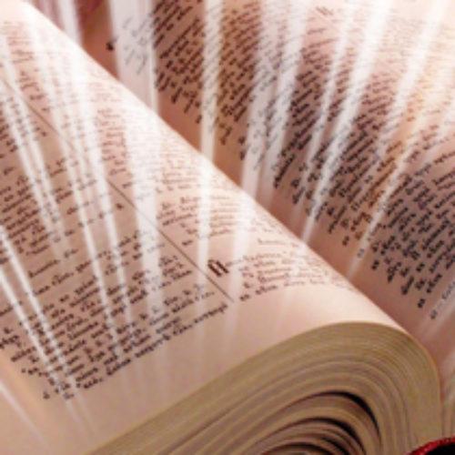 День Біблії у Бердичеві