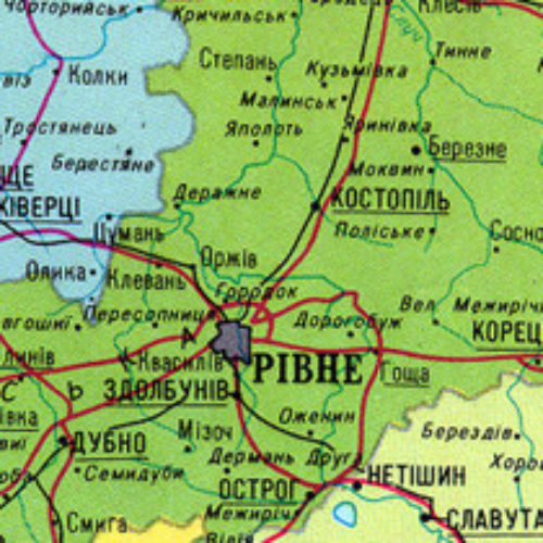 Сестринська районна конференція у с Поляни Березнівського району